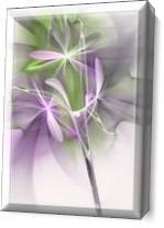 Flower Spirit As Canvas