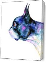 Boston Terrier As Canvas