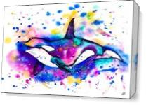 Orca As Canvas