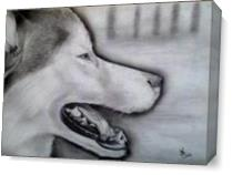 Wolf As Canvas