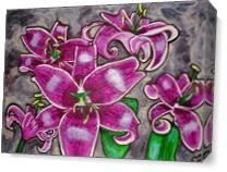 Stargazer Lilies As Canvas