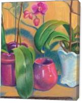 Orchids - Gallery Wrap