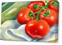 Tomatoes Still Life As Canvas