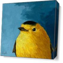 Baby Wilsons Warbler As Canvas