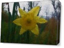 Yellow Flowwer Thru Broken Glass As Canvas