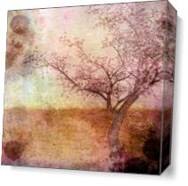 Cherry Blossom Pink As Canvas