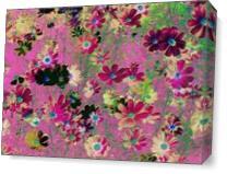 Cosmos Garden Flowers As Canvas