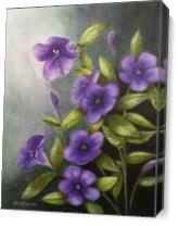 Carolina Wild Petunia (Ruellia Caroliniensis) As Canvas