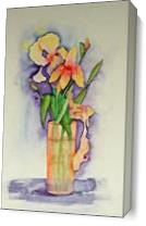 Irises As Canvas