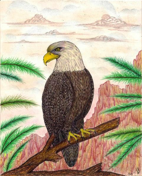 Eagle Of Freedom