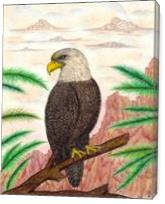 Eagle Of Freedom - Gallery Wrap