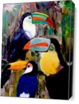 Three Toucans As Canvas