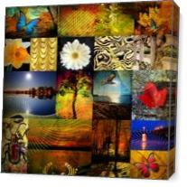 Collage From The Nature As Canvas