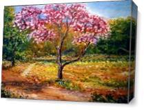 Bautiful Park As Canvas
