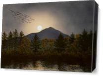 Night Calls As Canvas