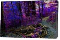 Path In The Forest - Gallery Wrap