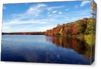 Autumn In The Poconos As Canvas