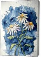 Daisies Flower Art Print - Gallery Wrap