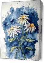 Daisies Flower Art Print - Gallery Wrap Plus