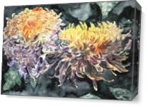Chrysanthemum Flower Art Print As Canvas