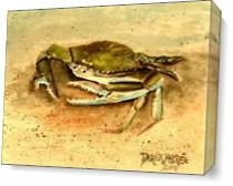 Crab Painting Square Art Print As Canvas