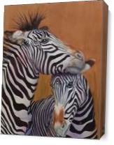 Zebra2 As Canvas