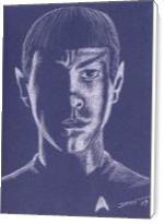 Spock - Standard Wrap