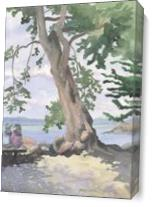 Crab Cove Couple As Canvas
