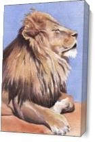 Lion In The Sun As Canvas