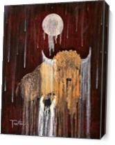 Buffalo Spirit As Canvas