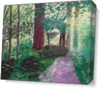 Woodland Path As Canvas
