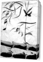 Bamboo Shoots As Canvas