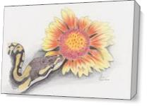 Snake And Flower As Canvas