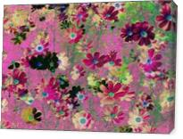 Cosmos Garden Flowers - Gallery Wrap