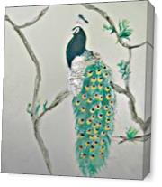 Peacock In The Morning As Canvas