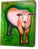 Cosmic Cow As Canvas