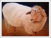 Shaggy Sheep - No-Wrap