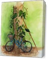 Old Bicycle As Canvas