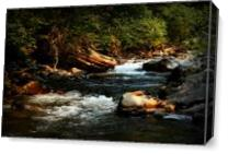Isabella Creek As Canvas