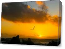 Flying In Sunset As Canvas