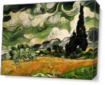 Field With Cypress View 2 As Canvas