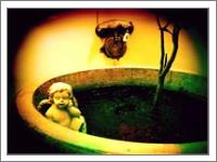 Cherub In Tub 1 - No-Wrap