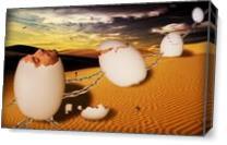 Dream Of Desert As Canvas