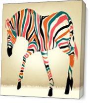 Zebrad 3 As Canvas