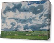The Sheep On Field As Canvas