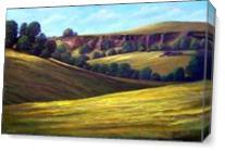 Canyon Oaks  As Canvas