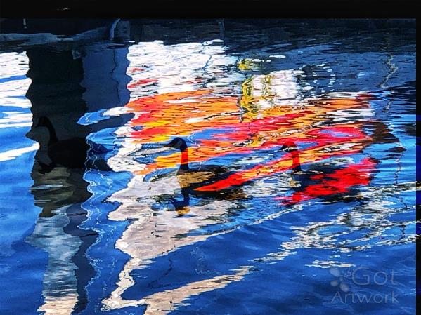 Ducks In Reflections