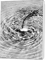 Water Circle - Standard Wrap