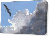 Pelican In The Clouds